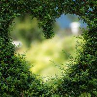La ventana de Yohari – Autoconocimento